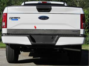 """Exterior Accessories - Tailgate Products - QAA - Ford F-150 2015-2017, 2-door, 4-door, Pickup Truck (1 piece Stainless Steel Tailgate Accent Trim 4"""" Width, with logo cut out ) RT55308 QAA"""