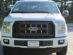 Chrome Trim - Grille Accents - QAA - Ford F-150 2015-2016, 2-door, 4-door, Pickup Truck (8 piece Stainless Steel Front Grille Accent Trim ) SG55308 QAA
