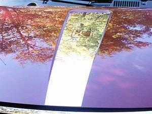 "Chrome Trim - Hood Accents/Trim - QAA - Saturn Ion 2005-2007, 4-door, Sedan (1 piece Stainless Steel Hood Accent Trim 7.82"" Width, with LOGO ) HD45410 QAA"
