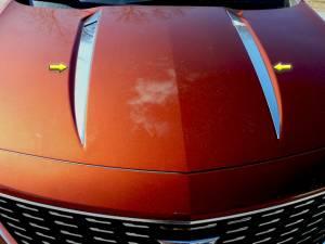 Chrome Trim - Hood Accents/Trim - QAA - Cadillac XT4 2019-2020, 4-door, SUV (2 piece Stainless Steel Hood Accent Trim ) HT59210 QAA